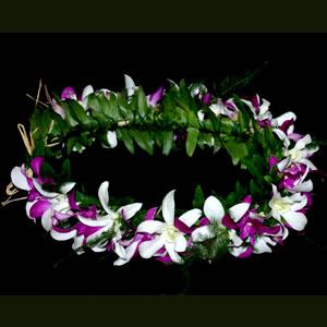 Fresh Flower Haku Headband Aloha Hawaiian Flowers