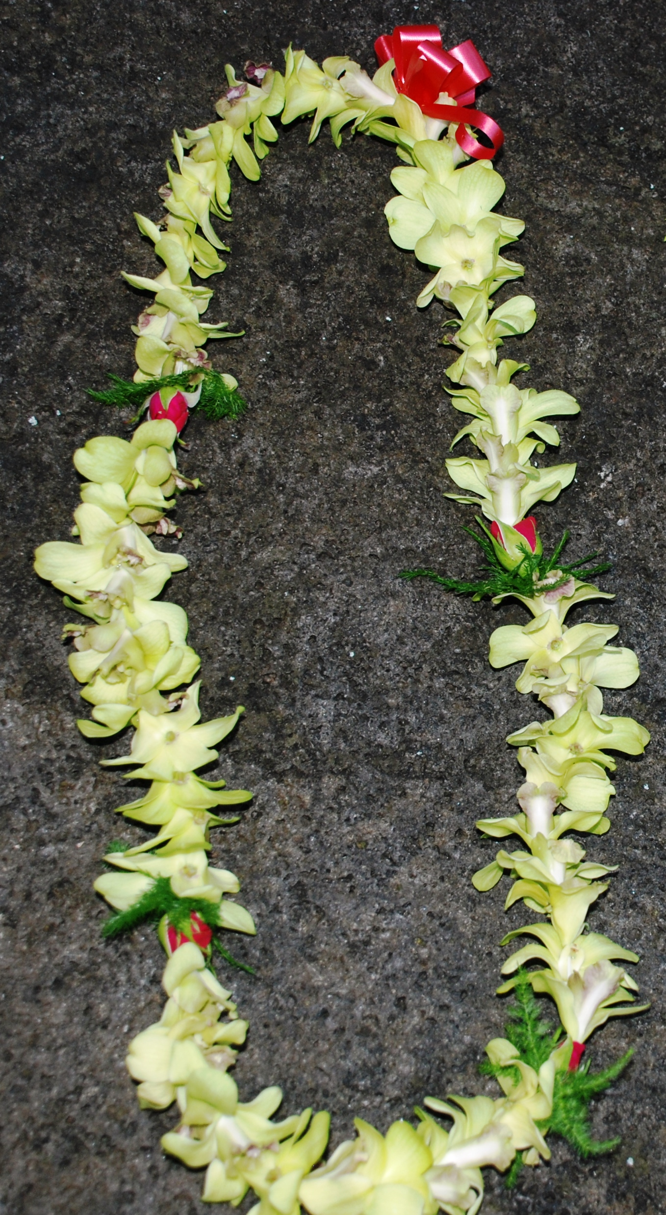 Hawaiian fresh flower leis green orchids and baby red roses lei izmirmasajfo