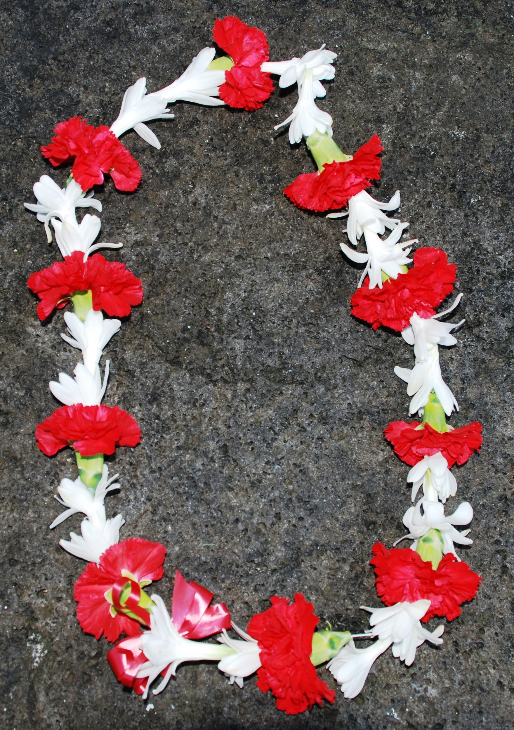 Hawaiian fresh flower leis red carnation and white tuberose lei izmirmasajfo